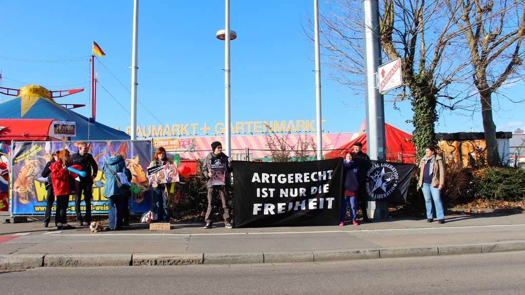 Erneuter Protest von Animal Rights Watch gegen den Circus Manuel Weisheit
