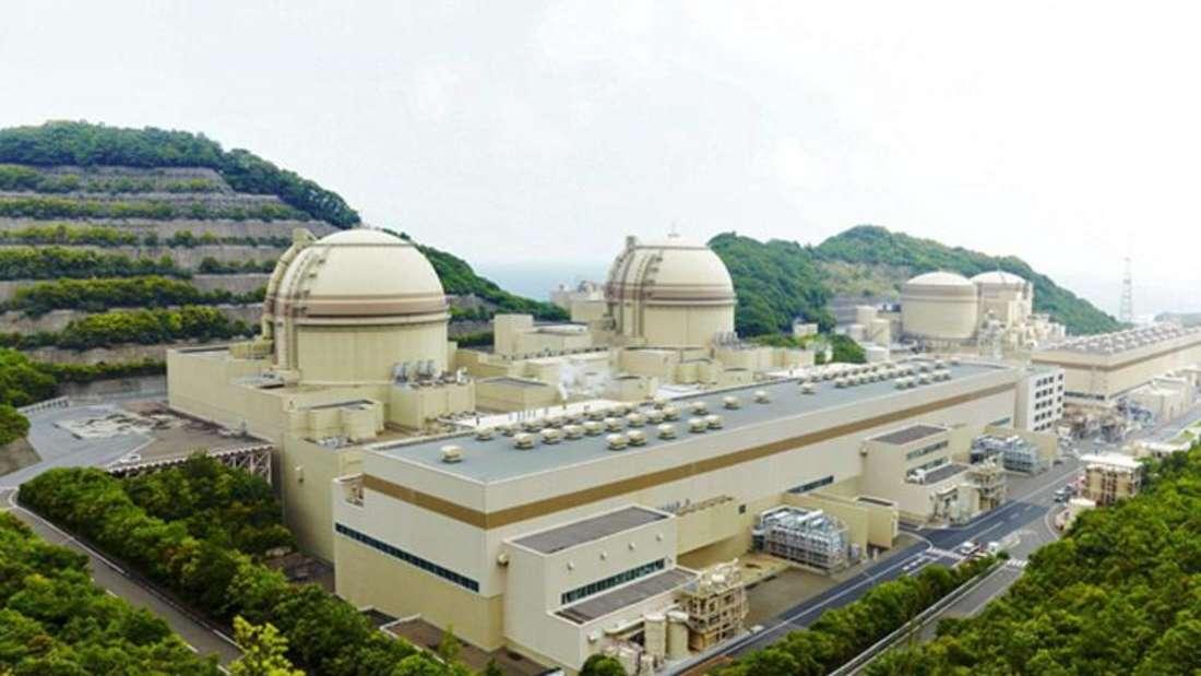 Das Atomkraftwerk der Kansai Electric Power Company im japanischen Oi wurde trotz vieler Proteste wieder hochgefahren. Foto: Kepco/Archiv