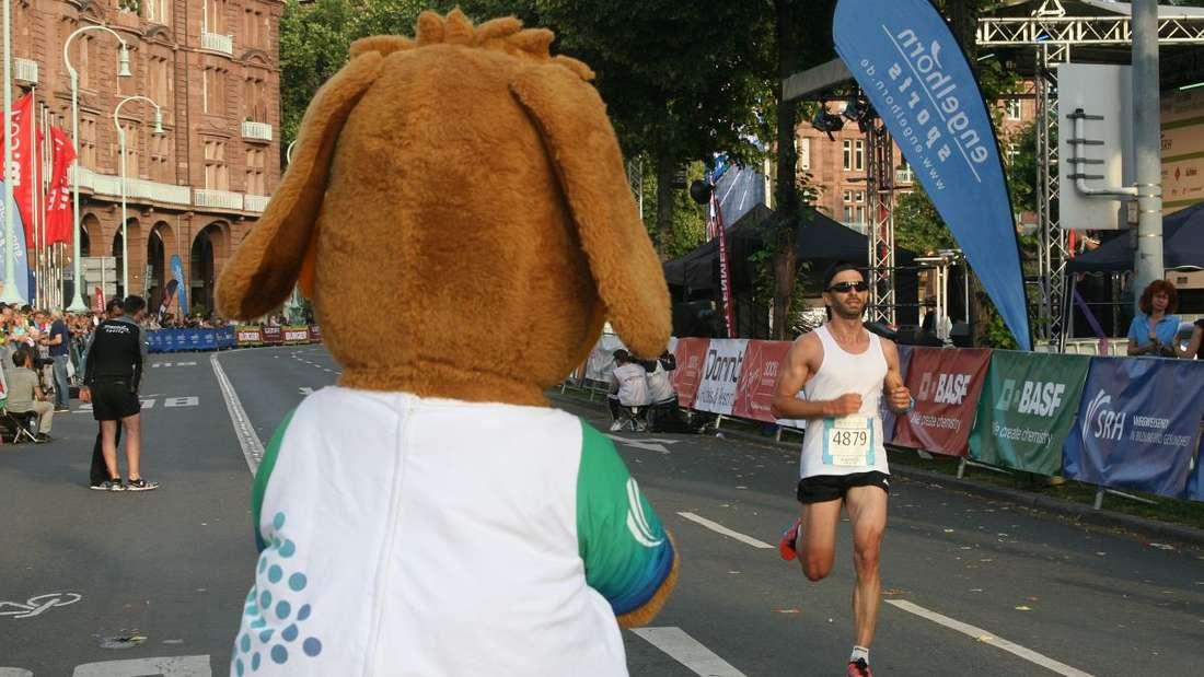 Unsere Bilder vom SRH Dämmer Marathon
