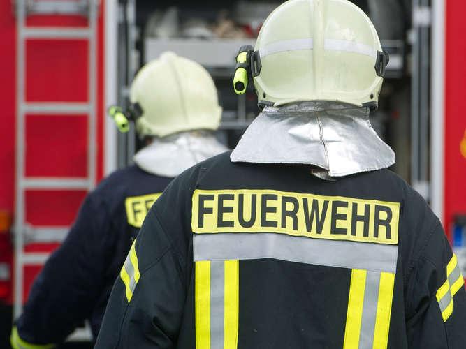 Kuriose Nachrichten aus aller Welt - Ludwigshafen24