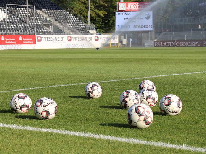Fussball News Rund Um Den Sv Sandhausen Ludwigshafen24