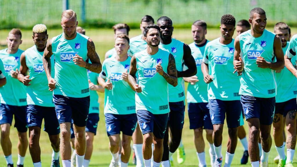 Hoffenheim Transfer