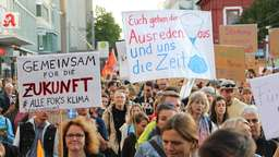 "So bunt ist die ""Fridays for Future""-Demonstration in Mannheim"