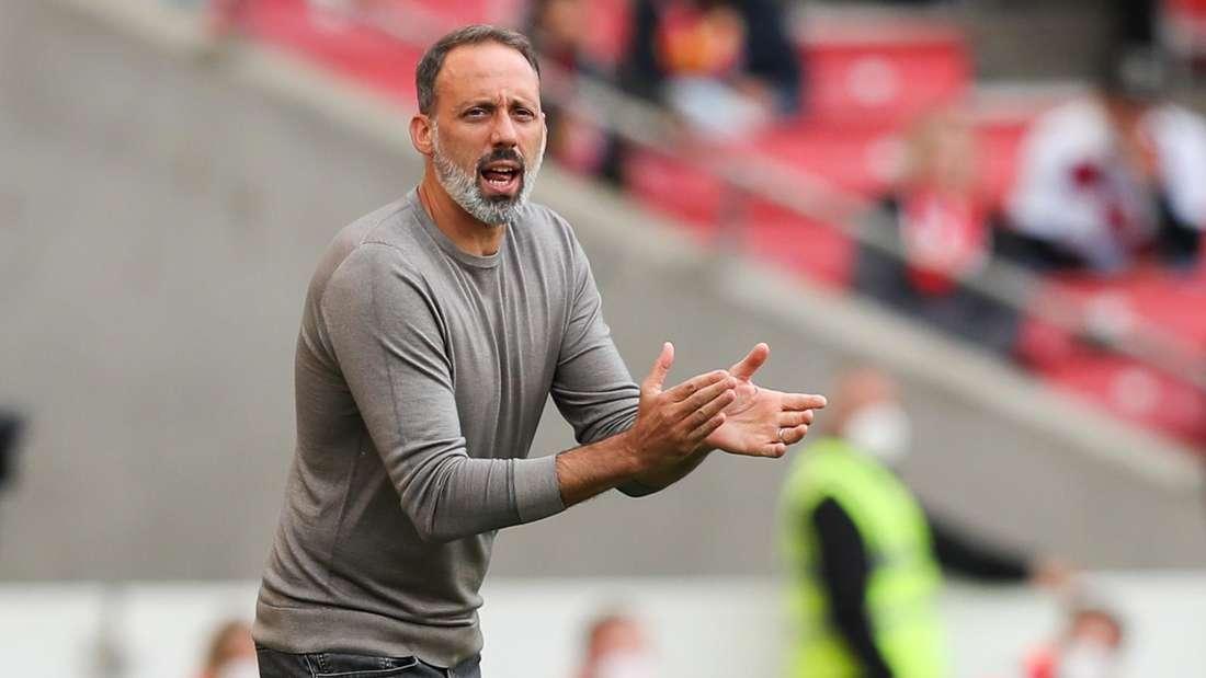 Pellegrino Matarazzo Trainer des VfB Stuttgart