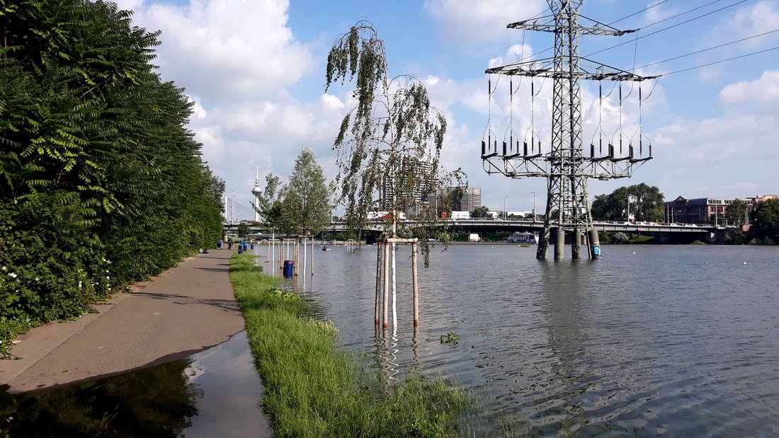 Hochwasser in Mannheim: Impressionen vom Neckar am Freitag (16. Juli 2021).